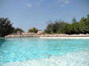 maison-hote-tarn-piscine-parc-6