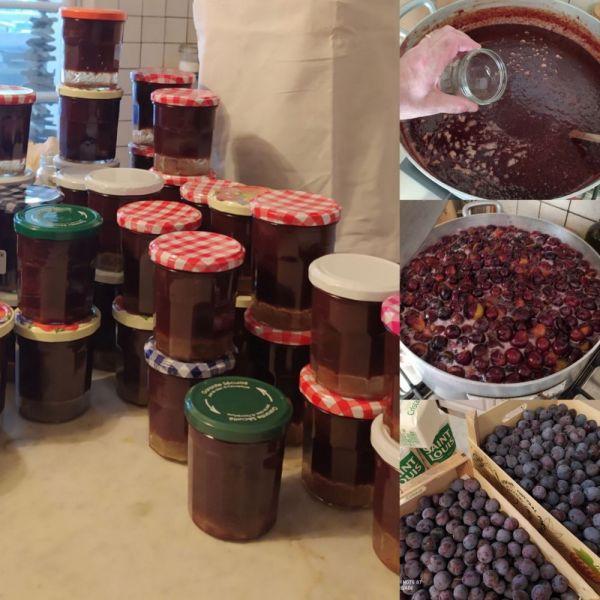 confiture-de-prunes