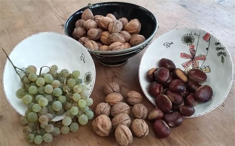 Fruits-dautomne-a-la-Frejade---copie