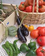 legumes-frais2